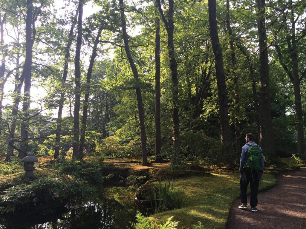 Mooie natuur in de Japanse tuin Den Haag