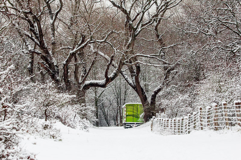 Wandelen door de sneeuw in Bloemendaal