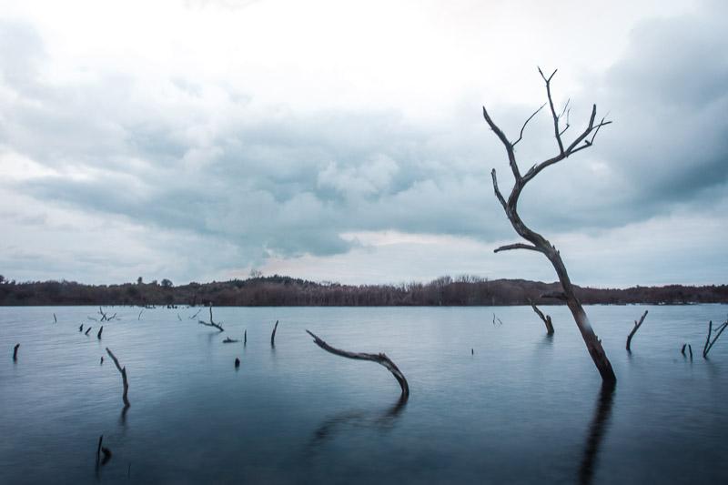 Winter Nationaal Park Zuid-Kennemerland