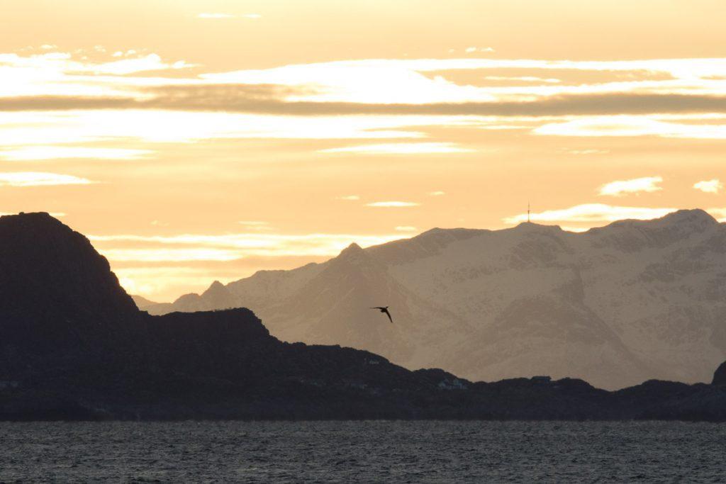 Mooie lucht tijdens roadtrip Noorwegen