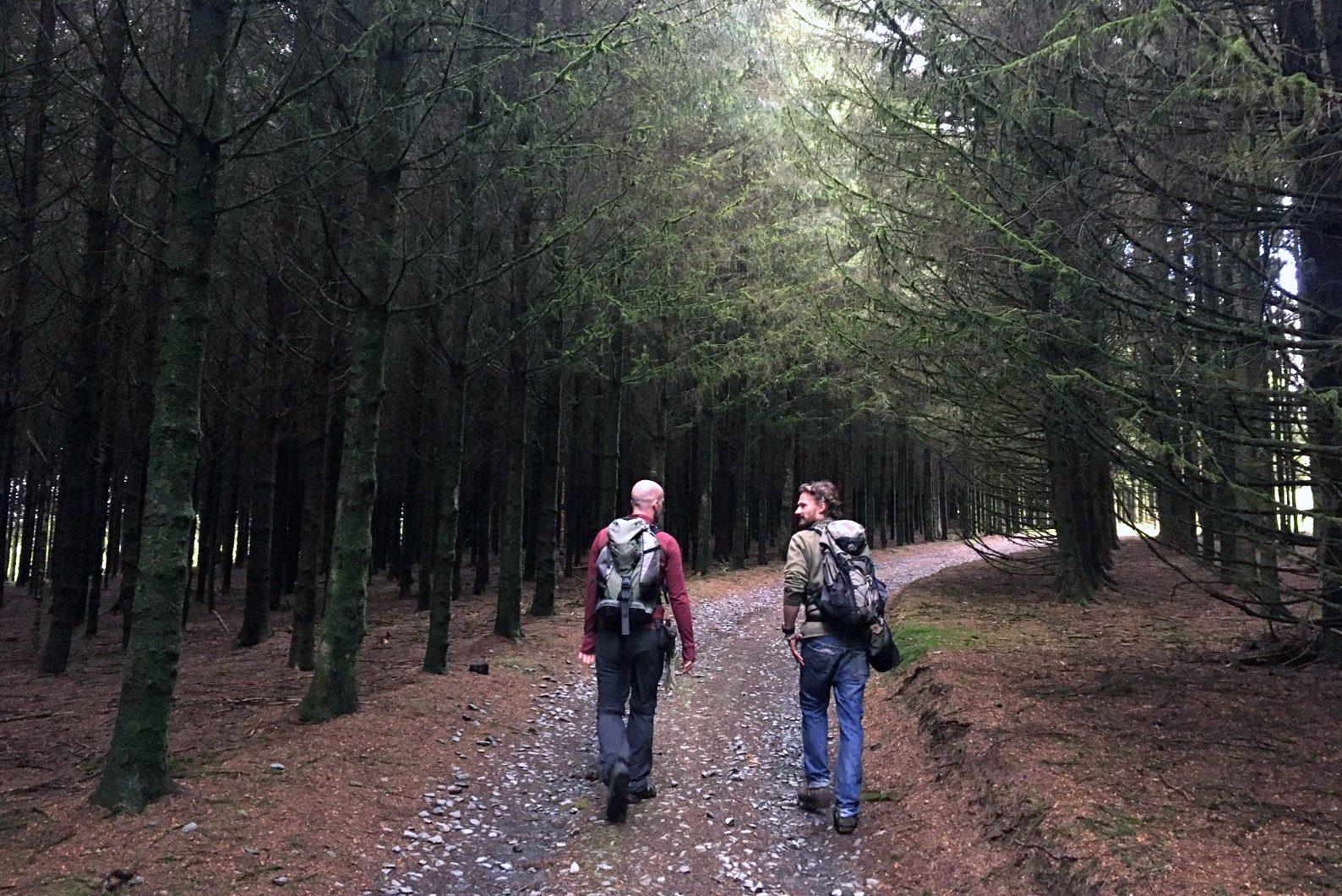 Ga mee op stiltewandeling in Den Haag