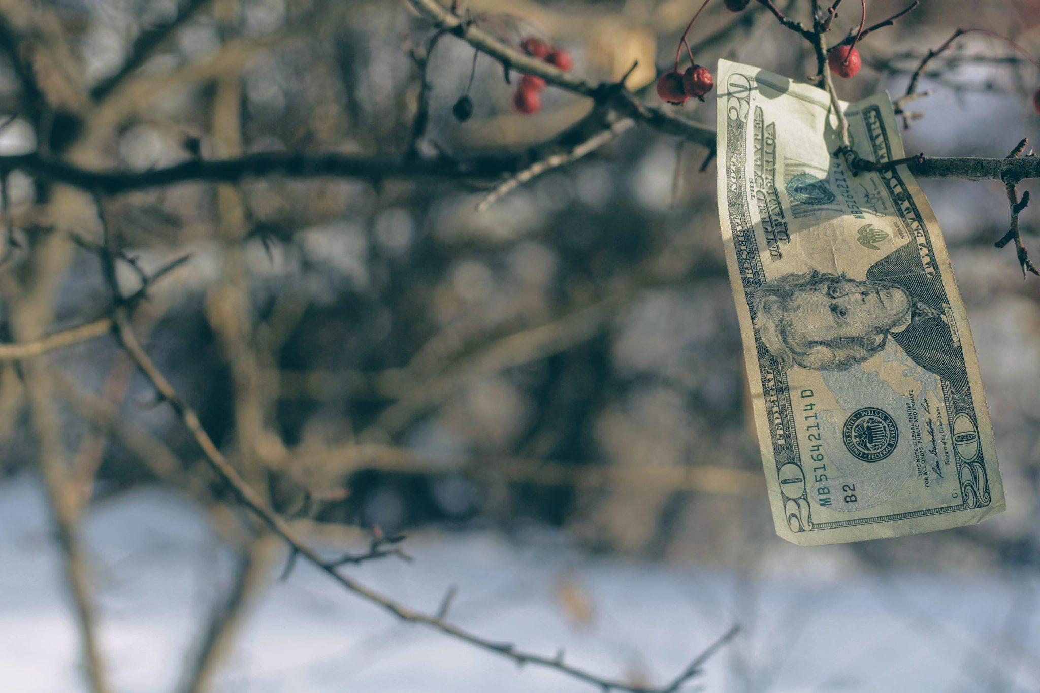 Aflossen van studieschuld in anderhalf jaar