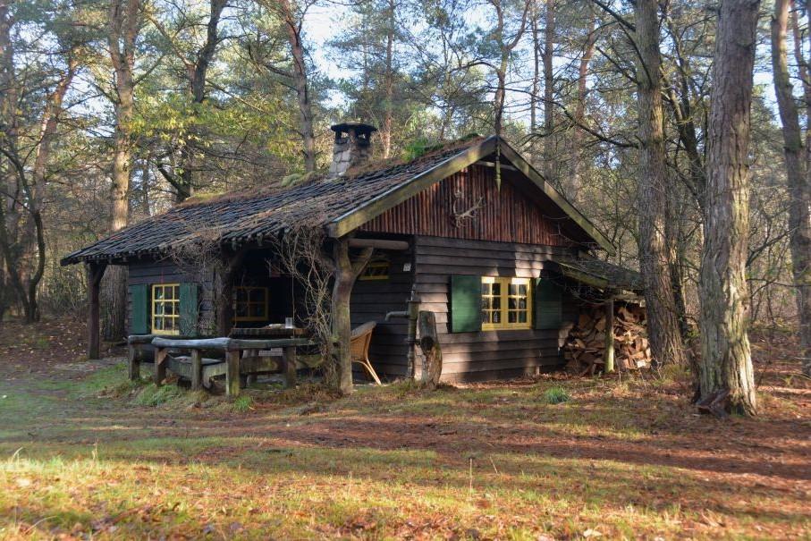 Huisje in bos Nederland
