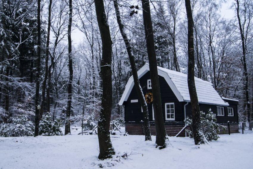 Natuurhuisje herfst Nederland