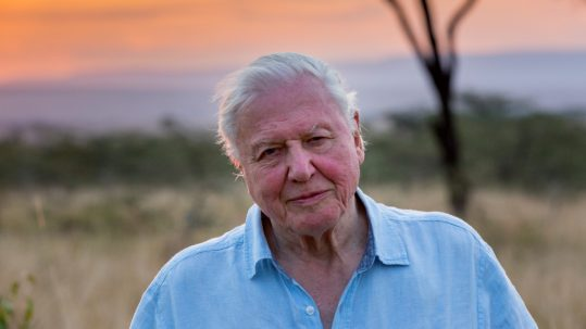 Attenborough's nieuwst documentaire