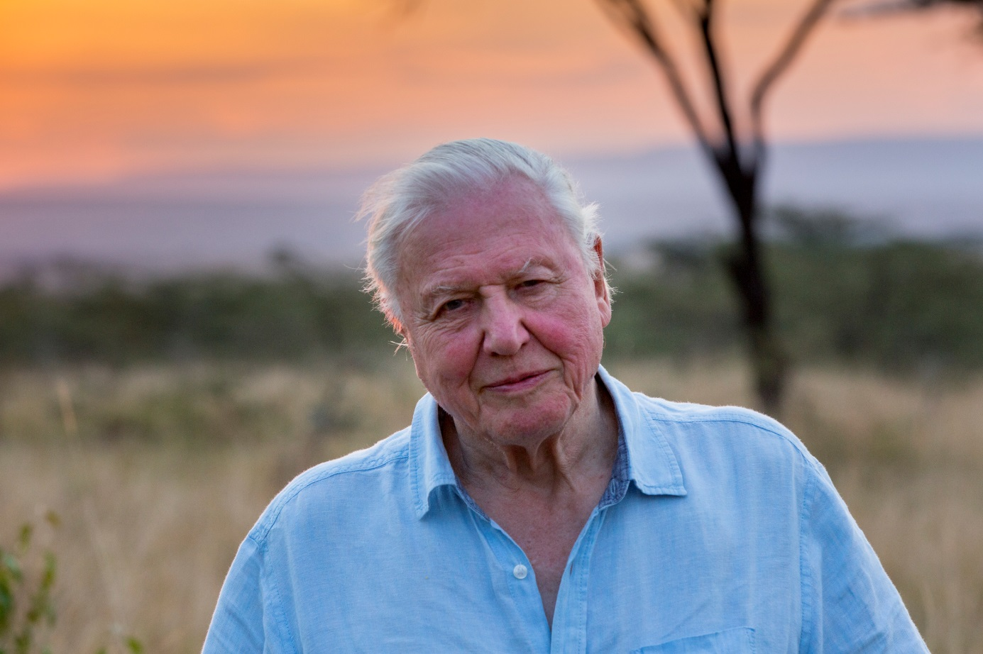 Attenborough's nieuwst documentaire
