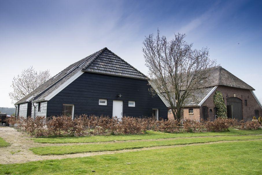 Huisje in de natuur Nederland