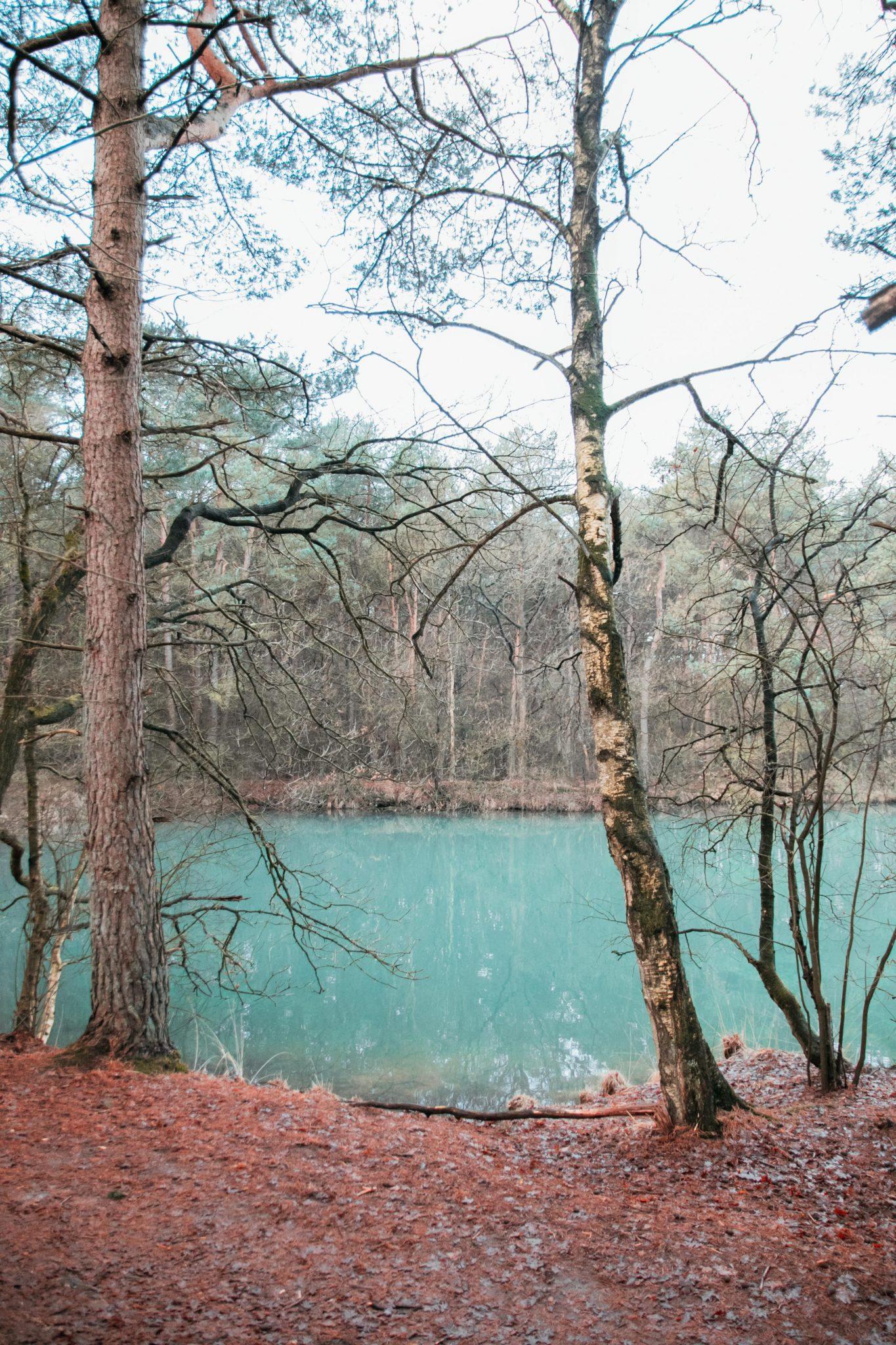 Wandelroute langs het blauwe meer in Drenthe