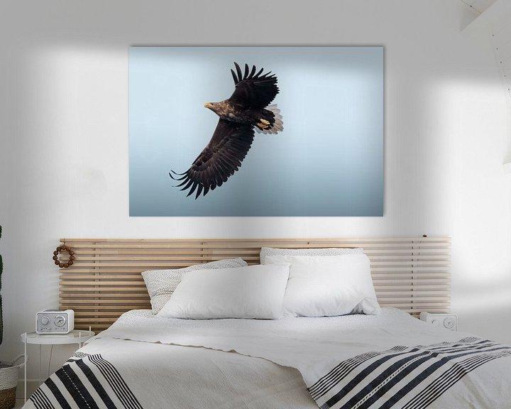 Natuurfoto op canvas, aluminium of hout