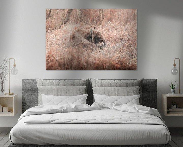 fotoprint van bizon op canvas